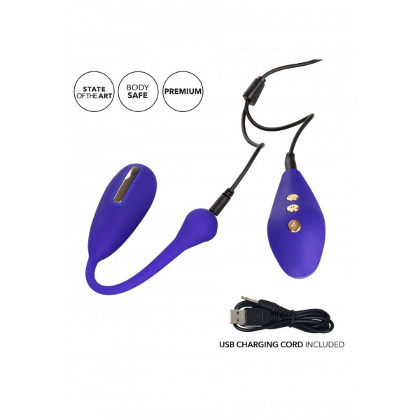 Impulse E-stim Remote Kegel Execiser